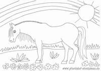 Pferdehof Stockmann Zellingen